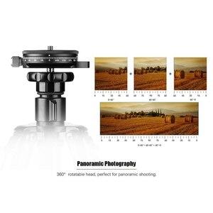Image 3 - Socle de caméra avec plaque Arca Style suisse, tête de trépied à billes panoramique en aluminium à vis de 0.95Cm avec niveau à bulle, capacité de charge 2