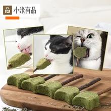 애완 동물 제품 고양이 민트 치약 스틱 개박하 자연 Mutian 스틱 개박하 롤리팝 고양이 새끼 고양이 씹는 물린 간식
