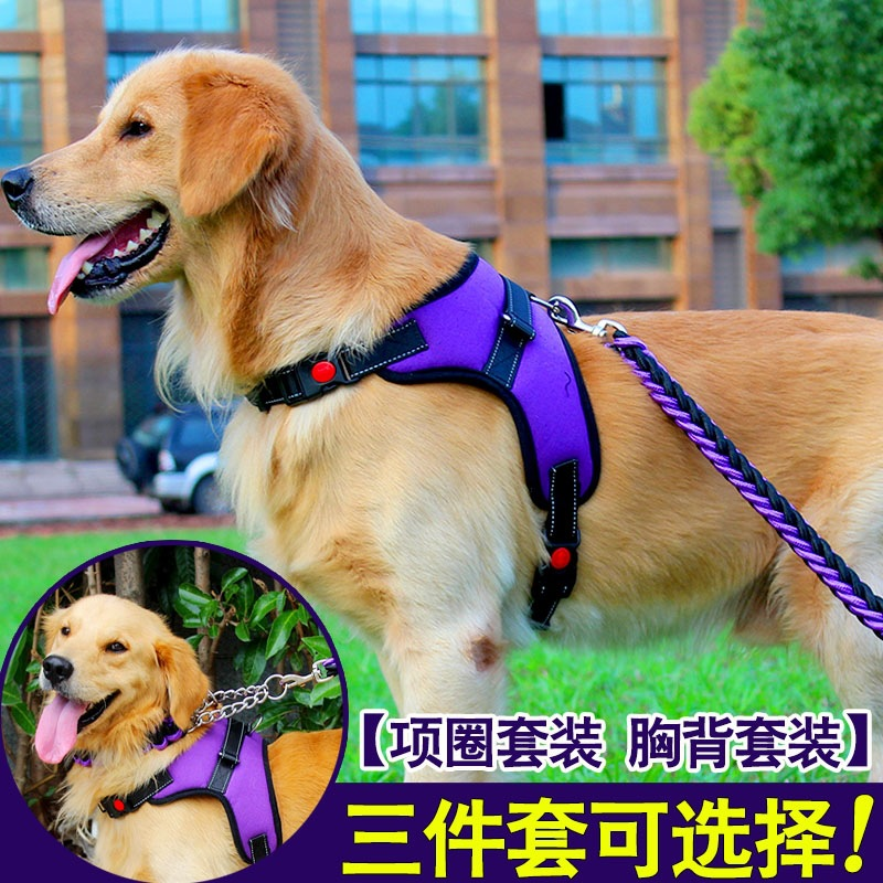 Dog Back Type Golden Retriever Lanyard Chest Neck Ring Traction Suspender Strap Dog Husky Dog Horse Shiba Inu Chinlon Dog Chain