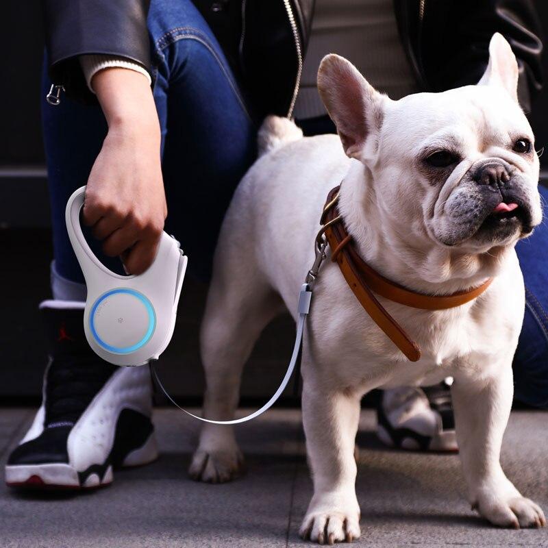 Petkit, автоматический поводок для домашних животных, выдвижной светодиодный поводок для домашних животных, светильник, светящийся безопасный поводок для собак, маленький средний Hondenriem - 6