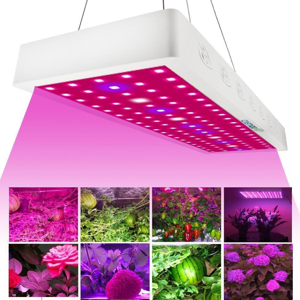 CASTNOO 1000W LED Grow Light Full Spectrum Indoor Hydro Veg Flower Growing Lamp For Plants Led Grow Lights Indoor Full Spectrum