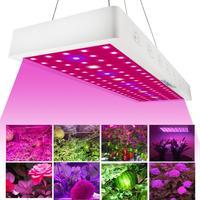 CASTNOO 1000W LED Grow Light Full Spectrum Indoor Hydro Veg Flower Growing Lamp for Plants Led Grow Lights Indoor Full Spectrum