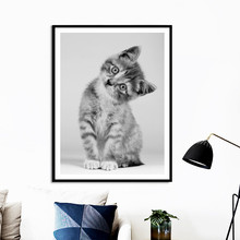 Nordic Canvas Painting Pet Wall Art Pictures Modern Black White Cute Cat Animals Posters And Prints For Home Living Room Decor black white zebra quote landscape wall art canvas painting nordic posters and prints animals wall pictures for living room decor
