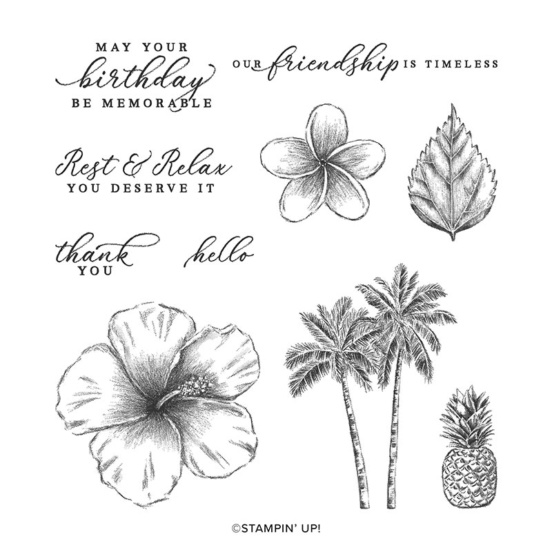 2020 3D New Metal Cutting Dies And In Scrapbooking For Paper Making Timeless Tropical Embossing Frame Card Clear Stamps Set