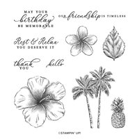 2020 3D New Metal Cutting Dies and In Scrapbooking For Paper Making Timeless Tropical Embossing Frame Card Clear Stamps Set Cutting Dies     -