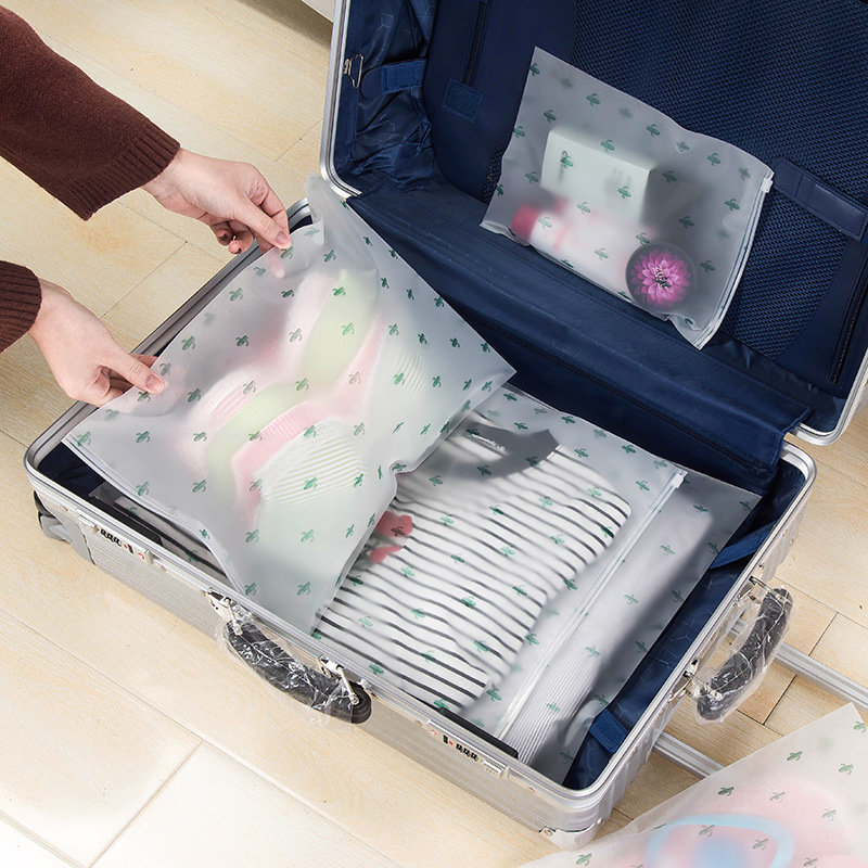 Transparent Shoes Bag With Lock Clothes Storage Luggage Bag Waterproof Cactus Cat Plastic Travel Suitcase Organizer