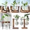 Frame Glass Vase Tabletop Terrarium Hydroponics Plant Vases Bonsai Transparent Flower Pot with Wooden Tray Home Decor 1