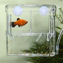 Big Size Aquarium Fish Breeding Box Floating Baby Shrimp Hatchery Isolation Feedin for Check Valve 1m Air Line