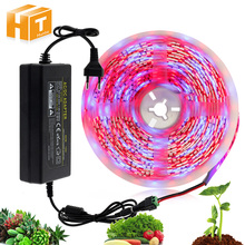 5m Set LED Strip Grow Light 12V DIY Flexible LED Strip 5050 Red Blue 3:1 / 4:1 With Adapter for Greenhouse Plant Growing