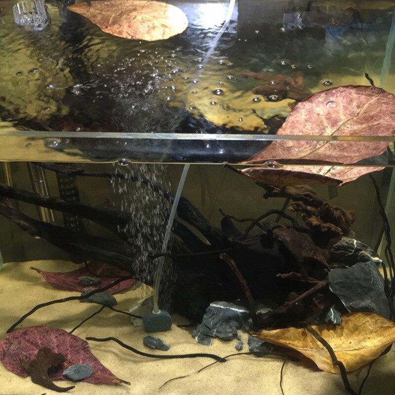 Color: Burgundy, Size: M Cocas 50pcs Terminalia Catappa Leafs Fish Tank Natural Olive Decor Aquarium Antibacterial Lower PH Level Water Aquarium Decoration