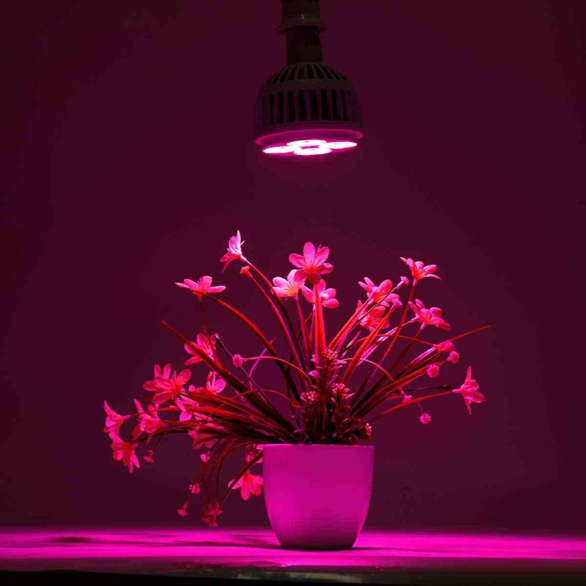 25 Вт полный спектр растений с/х Светодиодная лампа лампы освещение для семян гидро Цветочная теплица Veg Крытый сад E27 phyto growbox