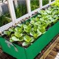 Behogar прямоугольные мешки для посадки, садовый нетканый горшок для посадки с ручкой для роста растений