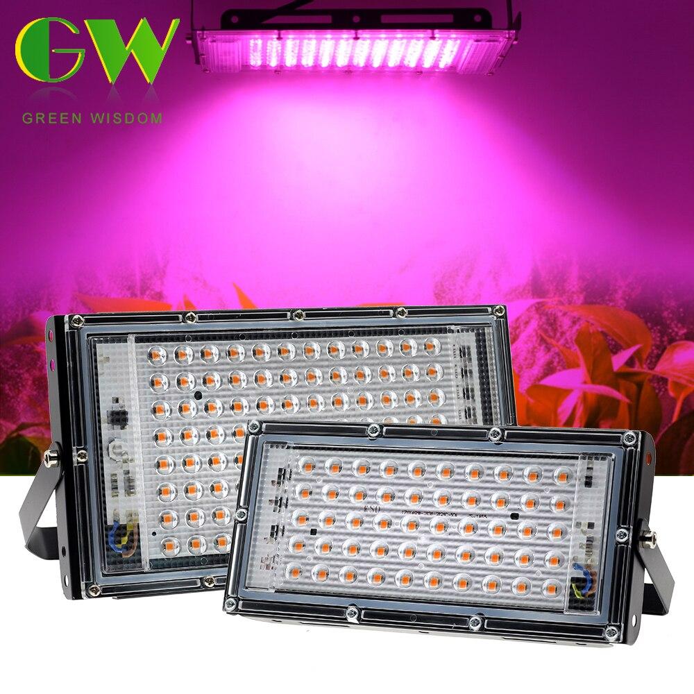 50W 100W LED Grow Light Phytolamp for Plants AC 220V Full Spectrum LED Floodlight for Flowers Seedlings Plant Growing Phyto Lamp