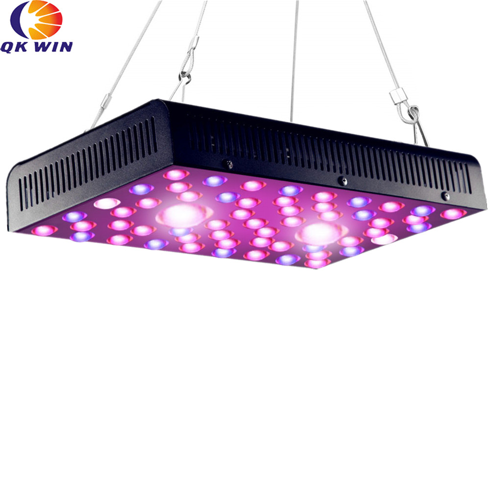 France Delivery High End COB Led Grow Light 1200W Bridgelux Chip COB Double Chip Leds Full Light Dual LENS