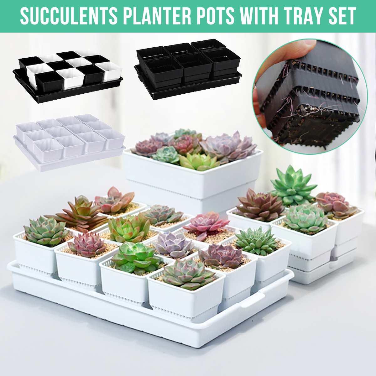 Square Plastic Succulents Planter Pots