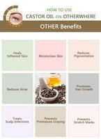 Eyelash Growth Treatments Eyebrow Growth Oil Mild Maintenance Nourishing Eyelash Growth Products Lengthening Eye Care TSLM1 4