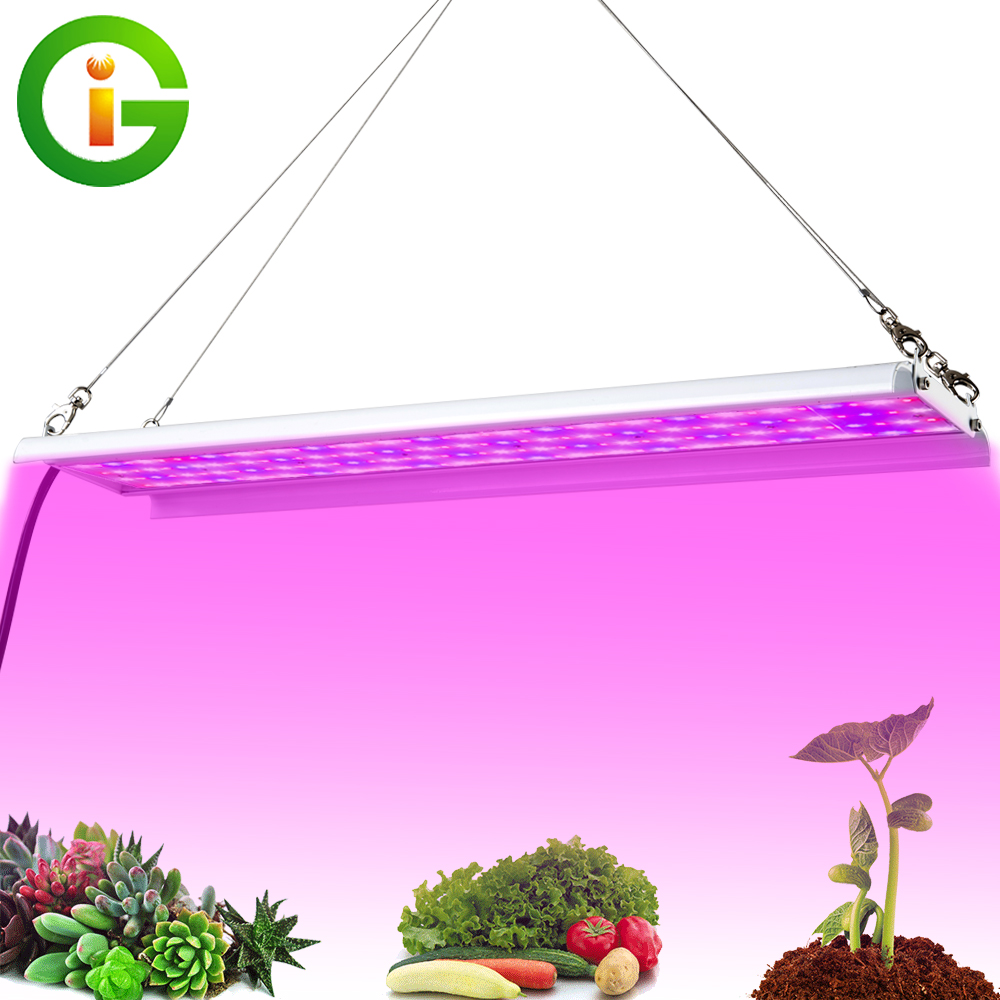 LED Grow Light 1000WFull Spectrum High Luminous Efficiency Phyto Lamp For Indoor Tent Greenhouse Hydroponic Plant Flower