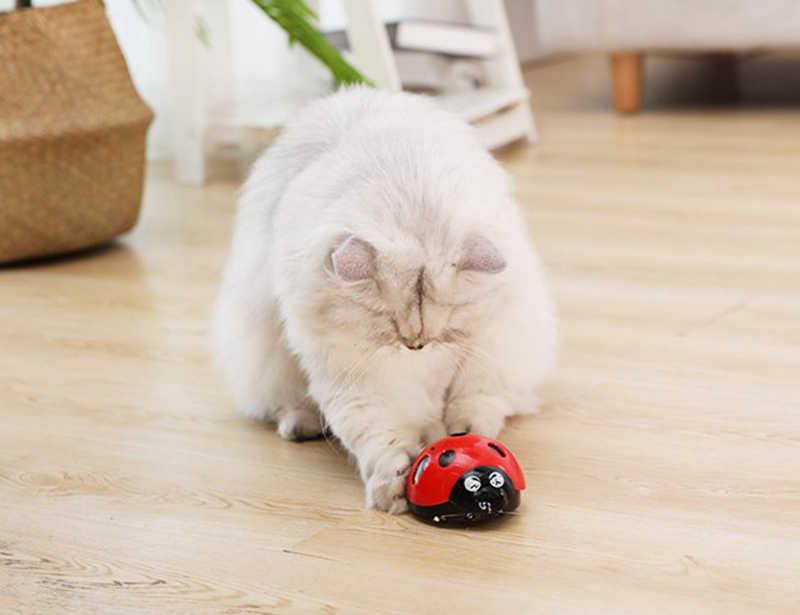 [& Mpk store] me pegar se você pode super brinquedo do gato do divertimento, brinquedo do animal de estimação a pilhas aaa, assista nosso vídeo para saber mais