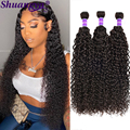 Kinky Curly Bundles 100% Human Hair Extension Natural Color 4 Bundles Kinky Curly Remy Hair Can Be Dye For Black Women Shuangya