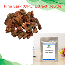 Hot sale high-purity pine bark extract 98% OPC powder to reduce cholesterol, beautify the skin, and delay aging