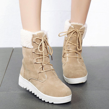 Classic Women Winter Boots Suede Ankle Snow Boots Female Warm Fur Plush Insole High Quality Botas Mujer