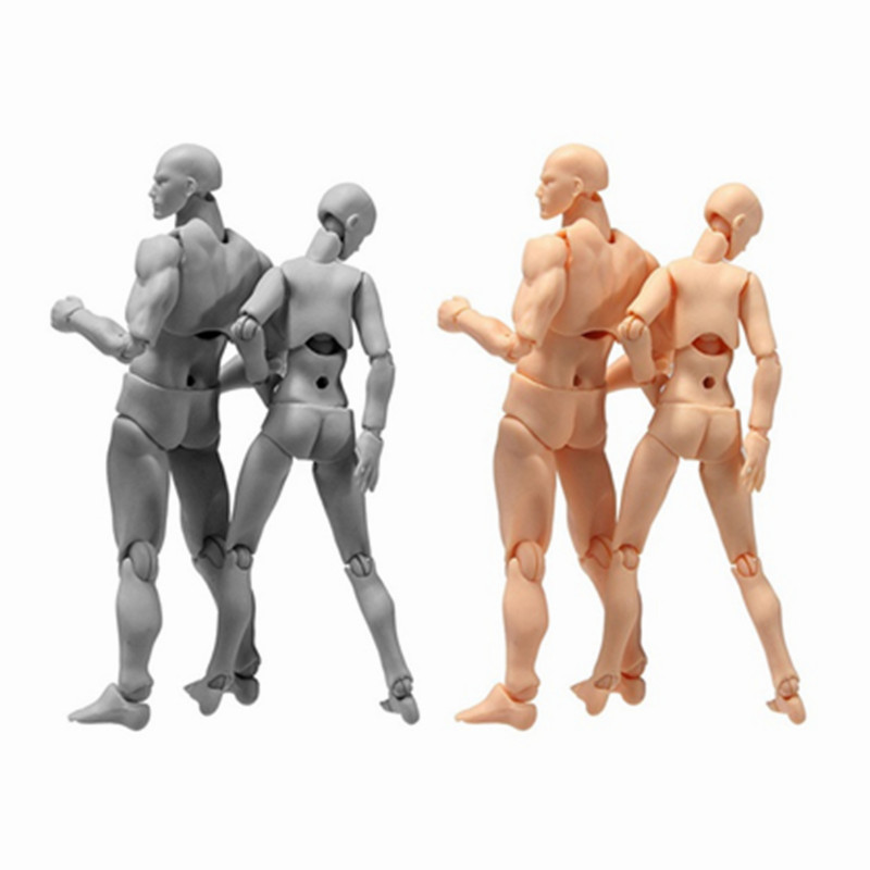 SH.Figuarts BODY KUN BODY CHAN PVC Action Figure Model Anime Archetype Ferrite Figma Movable Miniatures Toy Doll For Collectible|doll doll|dolls dolls dolls|doll model - title=