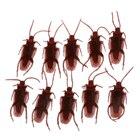 10 Fake Roaches Pran...