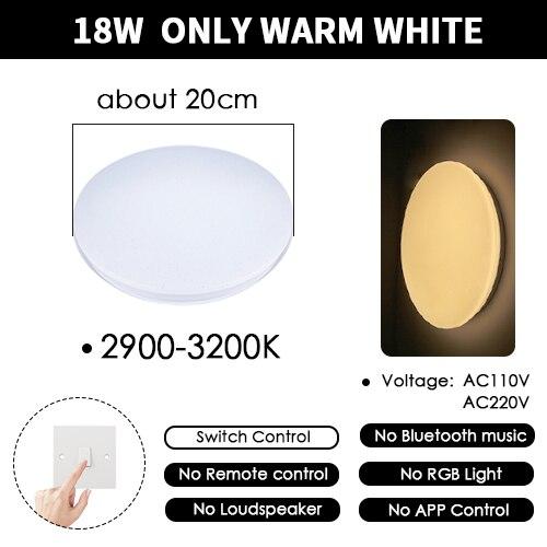 20cm 18W Warm White
