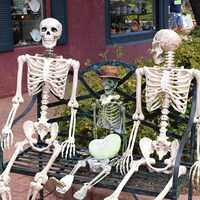 170CM Skeleton Human Halloween Prop PVC Skeleton Bones Horror Human Bones For House Party Halloween Decoration 2019 New