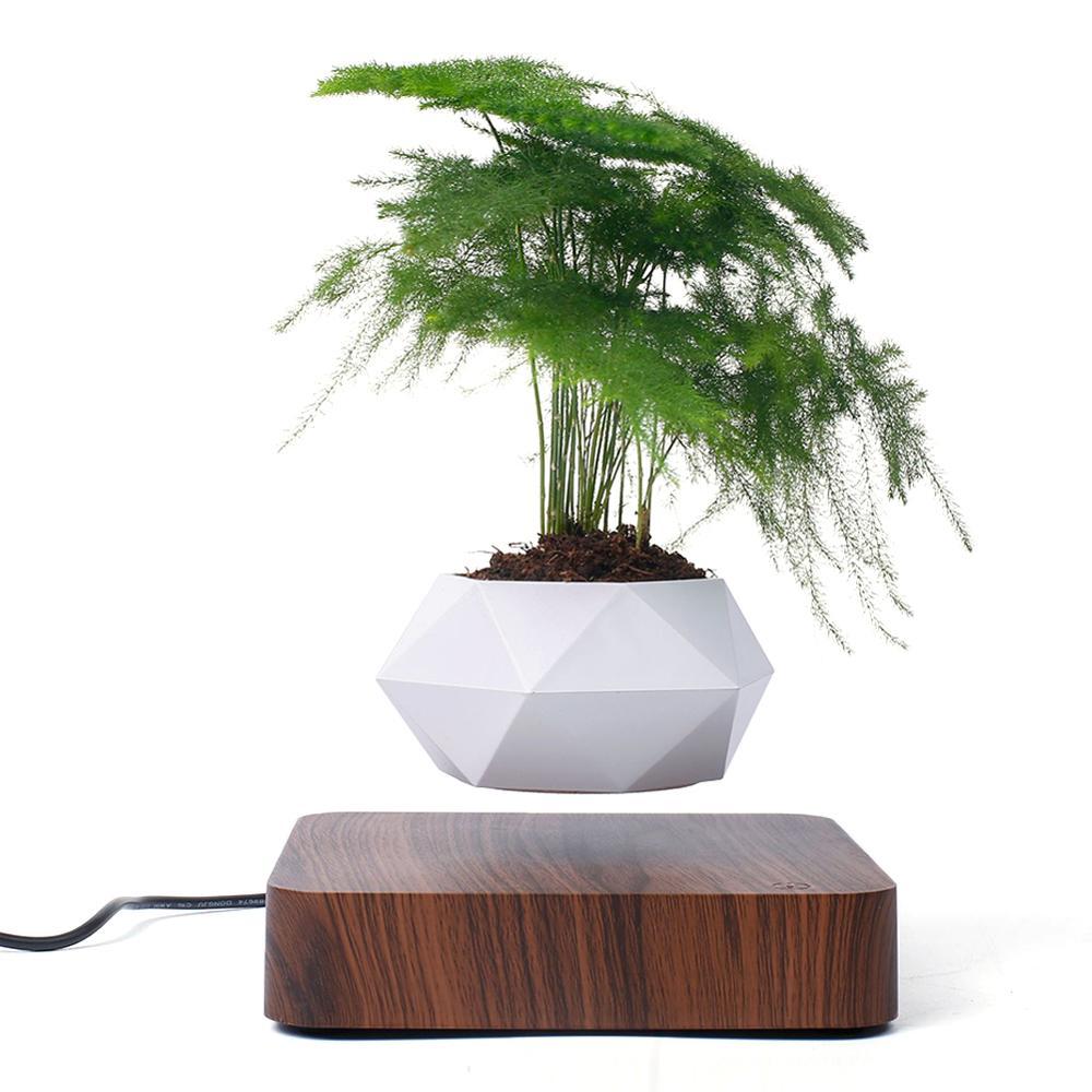 Pot à bonsaï à levitation en Air et Rotation, jardinière, jardinière à Suspension magnétique, Pot flottant pour maison (sans plantes)