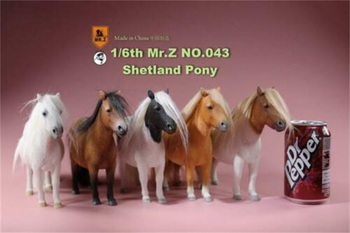 Mr.Z MRZ043 1/6 UK Shetland Pony Horse Mini Horses Animal Statue Figure Model