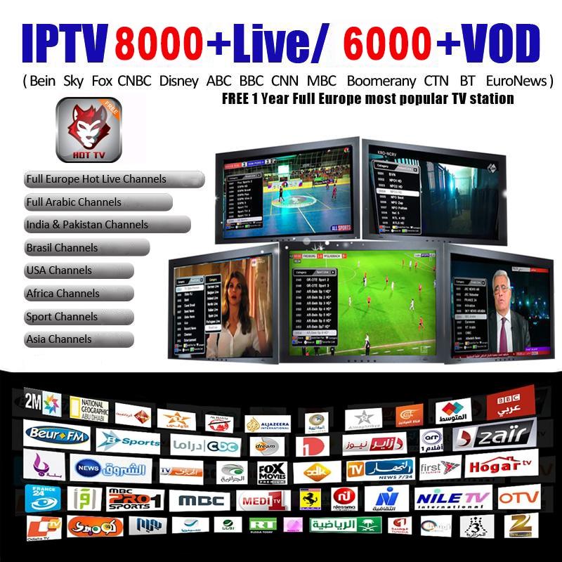 IPTV 8000+ M3U Live Ip Tv Subscription Iptv Android Box Fr Spanish USA NL UK Arab For 250Mag Smart Iptv M3u Enigma2