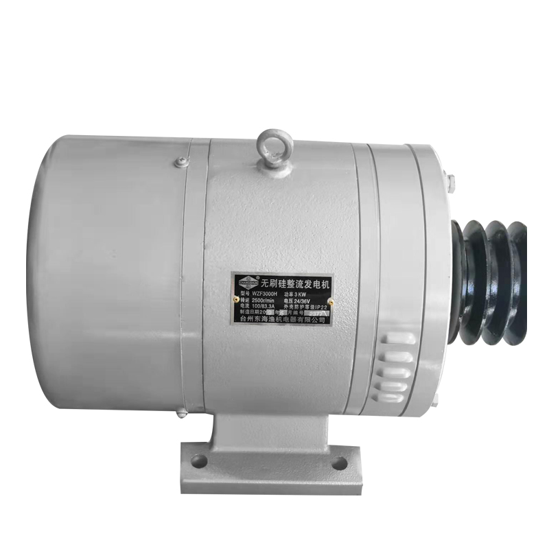 DC Marine Generator 3000W 24-36V Matching Regulator
