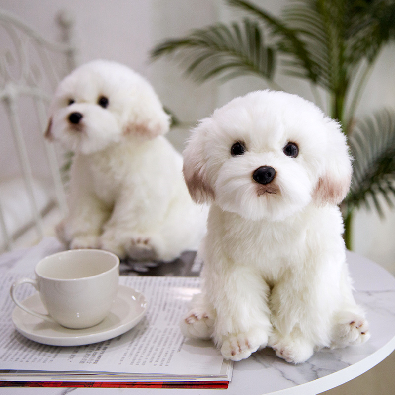 Super Cute Simulation Maltese Dog High Quality Plush Sweet Baby Play Doll Home Decoration Christmas Birthday Gifts For Kids