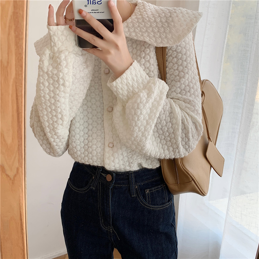 H1c810cf304e445c98d86aaab89054be6g - Spring / Autumn Big Lapel Long Sleeves French Lace Buttons Blouse