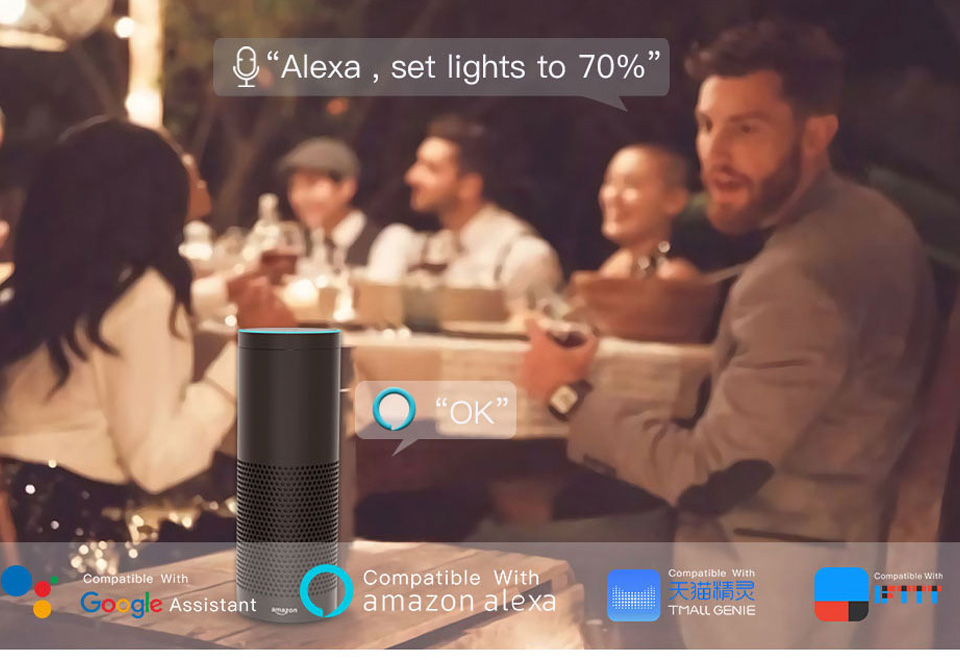 LED Strip Light Smart Christmas Light SMD5050 Flexible Ribbon led strip Alexa RGB Tape Diode DC 12V Remote Wifi Control Adapter (74)