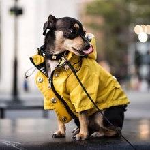 Одежда для собак малого и среднего размера водонепроницаемый