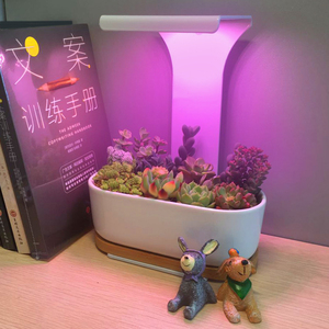 Indoor USB LED Grow Light Desk