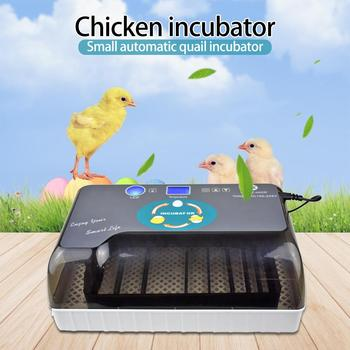 12Egg Newest Best Farm Hatchery Machine Hatchers Cheap Price Chicken Automatic Egg Incubator for Sale Quail Brooder EU/USPlug
