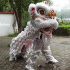 Lion Mascot Dance Co...