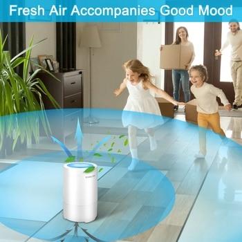 RIGOGLIOSO очиститель воздуха для дома с настоящим...