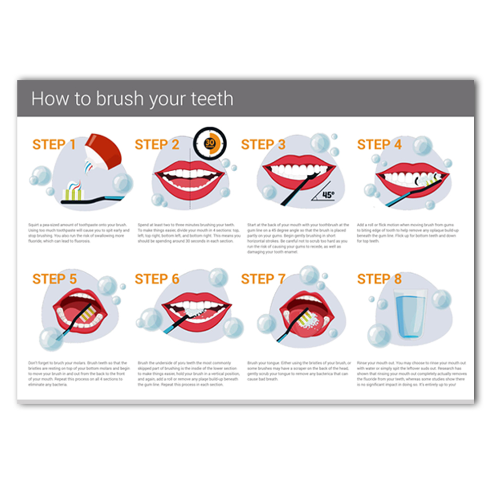 WANGART How to brush your teeth infographic by Alpha Dental Perth Modern Art Wall PictureMedical Education Office Home Decor image