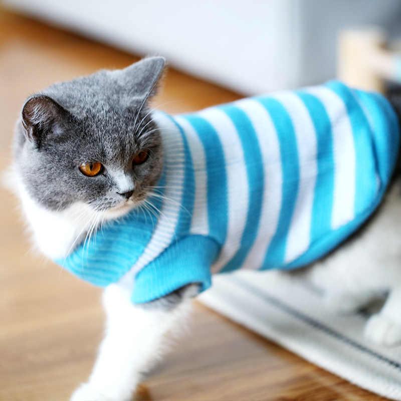 고양이 옷 귀여운 애완 동물 새끼 고양이 파란 고양이 새끼 고양이 짧은 스웨터 줄무늬 가을과 겨울 착용 따뜻한 고양이 옷 애완 동물 BB50WY