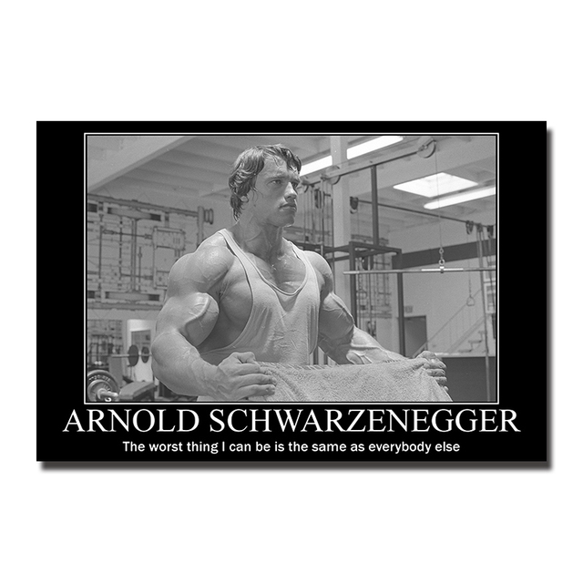 ARNOLD SCHWARZENEGGER Poster Discipline Full 24x36 Print Mint Original