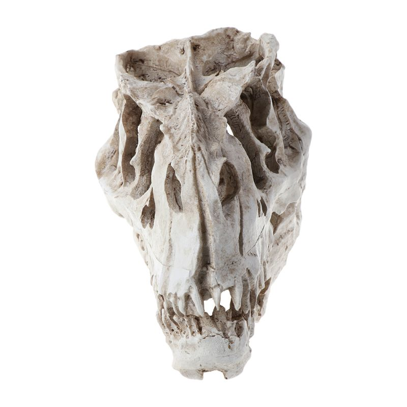Tyrannosaurus Dinosaur Skull Resin Crafts Fossil Skeleton Teaching Model Halloween Home Office Decoration