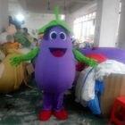 Vegetable Eggplant M...