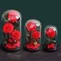 Вечная Сохраненная Роза со стеклянным куполом Красавица и Чудовище Реальный цветок Вечная любовь свадебные подарки для вечеринки для женщ...