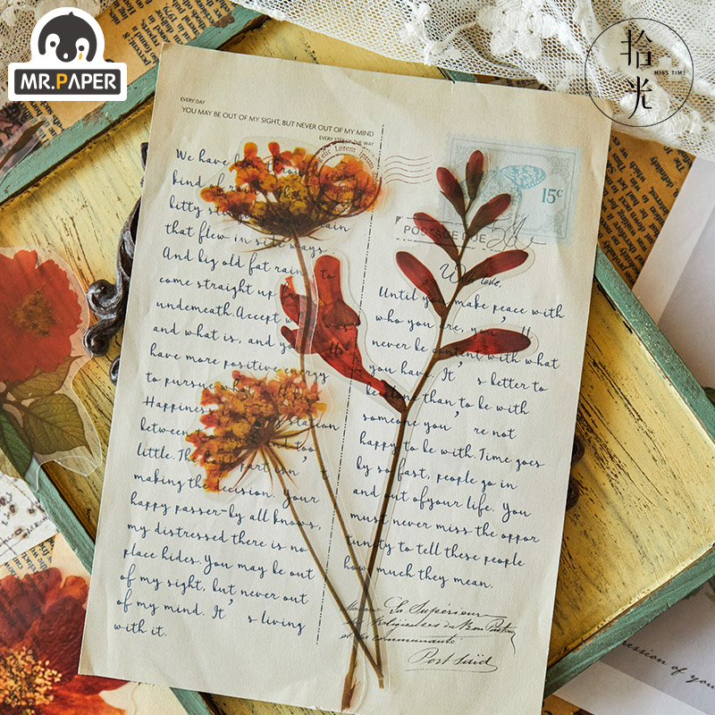 Mr.paper 6pcs/bag Botany Specimen Retro PET Big Deco Stickers Scrapbooking Cute Junk Bullet Journal Graffiti Stationery Stickers