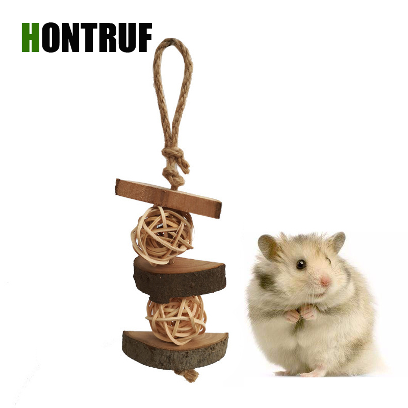 Natural font b Pet b font Toy Totoro Hamster Bunny Parrot Bird font b Pet b