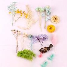 Вечный цветок материал ручной работы Цветочные продукты diy